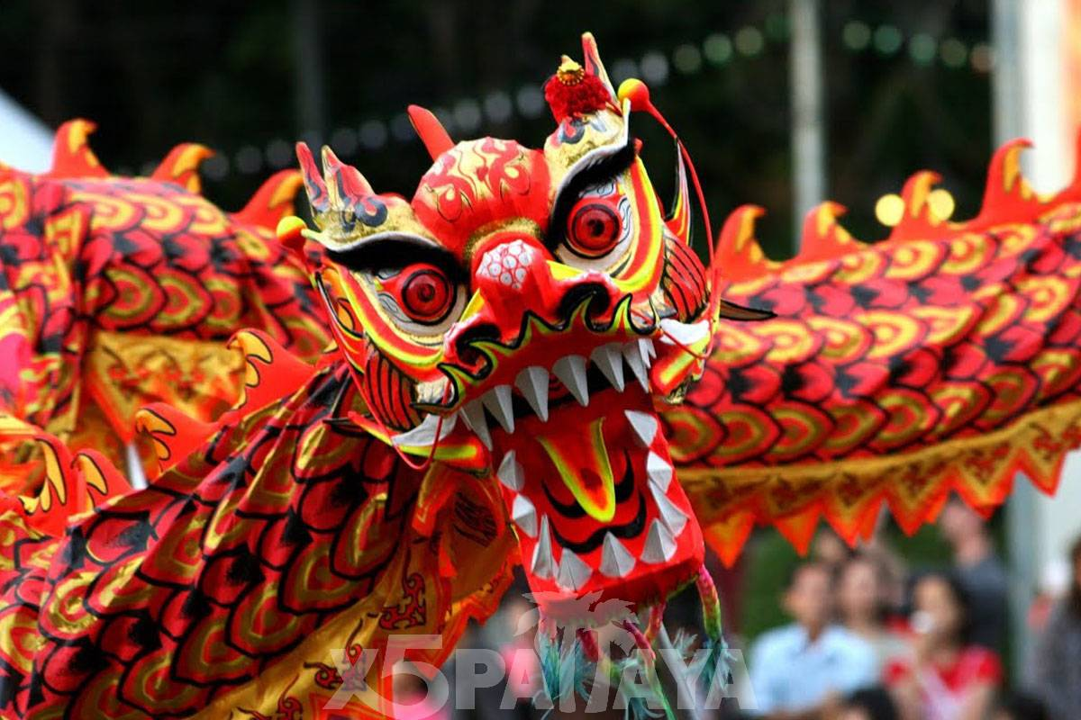 фото китайского дракона